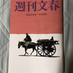 【文春】ヒカル年収5億は嘘だと発覚